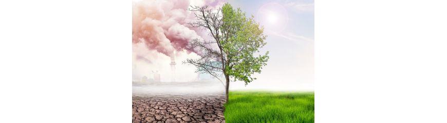 Desinfección y purificación de aire